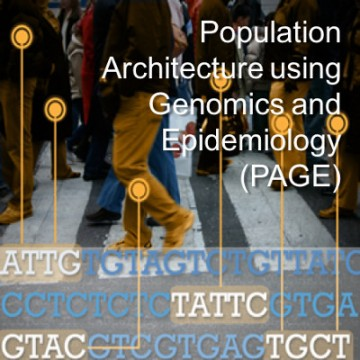 Population Architecture using Genomics and Epidemiology (PAGE)